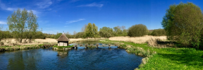 River Test, from the Source to the Sea – Longstock